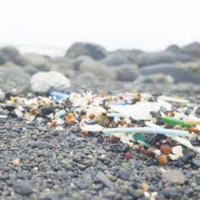 Ciudadanos solicita un plan de reducción de plásticos en Las Palmas de Gran Canaria